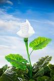 Energiekonzept, bedecken freundliche Glühlampeanlage mit Erde Lizenzfreie Stockbilder