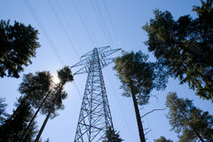 Energies. Power supply line trough the forest with the sun royalty free stock photography