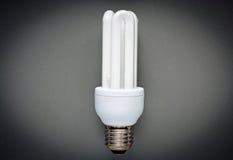 Energiesparender Fühler Lizenzfreie Stockfotografie
