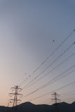 Energieturmkabel Stockbilder