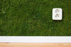 energigreen Arkivfoto