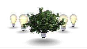 Energii odnawialnej pojęcie, zielony energetyczny symbol Obraz Stock