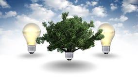 Energii odnawialnej pojęcie, zielony energetyczny symbol Obrazy Royalty Free
