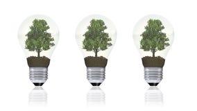 Energii odnawialnej pojęcie, zielony energetyczny symbol Zdjęcia Royalty Free