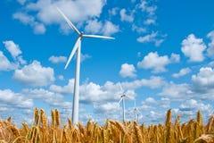 energii zieleń zdjęcia royalty free