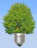 energii zieleń Fotografia Stock