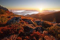 Energin av soluppgången Arkivbilder