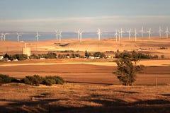 Energized Community Stock Images