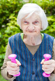 Energized elderly woman doing exercises with dumbbells Stock Photography