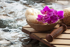 Energizing water for purifying massage. Loofah sponge flower water for massage scene Royalty Free Stock Photography