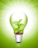 Energy. Green energy concept - plant in bulb stock photos