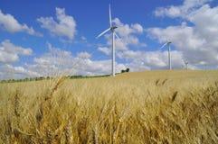 Energy and barley Stock Photos