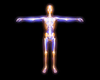 Energy body. 3D rendered visualization of the energy / astral body Stock Photography