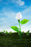 Energy concept, earth friendly light bulb plant Stock Photography