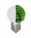 Energy concept, symbolizing renewable energy, bio energy Stock Photography
