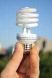 Energy Efficient Light Bulb royalty free stock photo