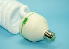Energy efficient light bulb Royalty Free Stock Image