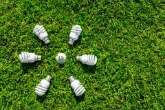 Energy efficient light bulbs on green grass. Energy saving concept stock images