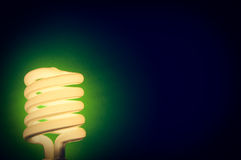 Energy Efficient Lightbulb Turned On Stock Images
