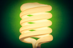 Energy Efficient Lightbulb Turned On Royalty Free Stock Photography