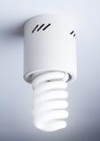 Energy efficient spiral light bulb Stock Image