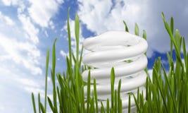 Energy. Electricity light bulb efficiency savings compact fluorescent lightbulb lighting equipment stock photography
