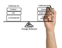Energy intake and Energy expenditure Royalty Free Stock Images