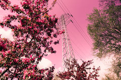 Energy pole in abstract pink scenery. Energy pole located in city park. Abstract pink scenery Royalty Free Stock Images