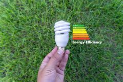 Energy rating chart Eco man energy efficiency scale image. W royalty free stock image