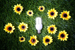 Energy save light bulb. Eco concept symbolizing the alliance technology nature, transformation of the solar energy, energy obtainable from the sun Royalty Free Stock Photography