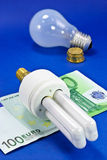 Energy Saving Bulb Royalty Free Stock Photography