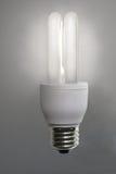 Energy saving bulb. Bright idea symbol with energy saving bulb royalty free stock photography