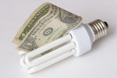 Energy saving bulb. With banknote Stock Photography