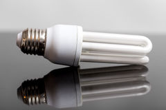 Energy saving bulb Royalty Free Stock Images
