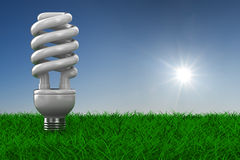 Energy saving bulb on grass Stock Photo