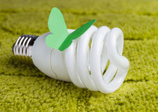 Energy saving bulb on a green background Stock Image