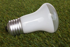 Energy saving bulb on green grass background Royalty Free Stock Images