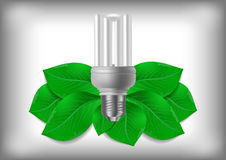 Energy saving bulb and green leaves Stock Images