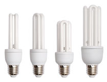 Energy saving bulb. Isolated image Royalty Free Stock Image