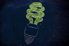 Energy saving bulb made of grass Stock Images