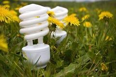 Energy saving bulbs on dandelion field Stock Image