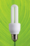 Energy saving compact fluorescent lamp Royalty Free Stock Image