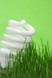 Energy saving compact fluorescent lightbulb Stock Photos