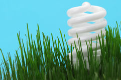 Energy saving compact fluorescent lightbulb Stock Images