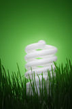 Energy saving compact fluorescent lightbulb Royalty Free Stock Image