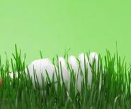 Energy saving compact fluorescent lightbulb Stock Photo
