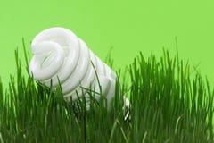 Energy saving compact fluorescent lightbulb Royalty Free Stock Photography