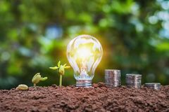 Energy saving concept lightbulb with plant growing and money sta. Ck on soil Royalty Free Stock Photos
