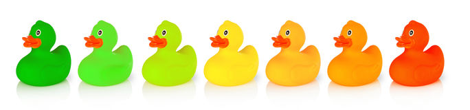 Energy saving concept. Rubber ducks with energy class colors, white background royalty free stock image