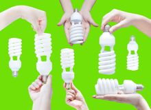 Energy saving concept. Woman hand holding light bulb on green. Background royalty free stock images
